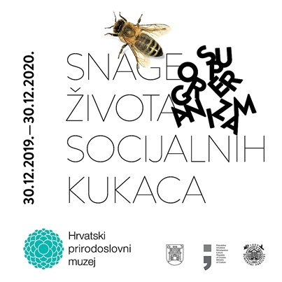 Izložba 'Superorganizam – snage života socijalnih kukaca' u HPM-u 🗓